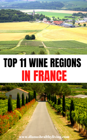 wine regions france french wines by region regions of france wine wine region of france wine regions in france wine in france france wine france region wine french wine regions french wine region french wines regions regions of wine in france wine region france wines regions of france wine france regions france wine regions wine regions of france french wine types types of french wine