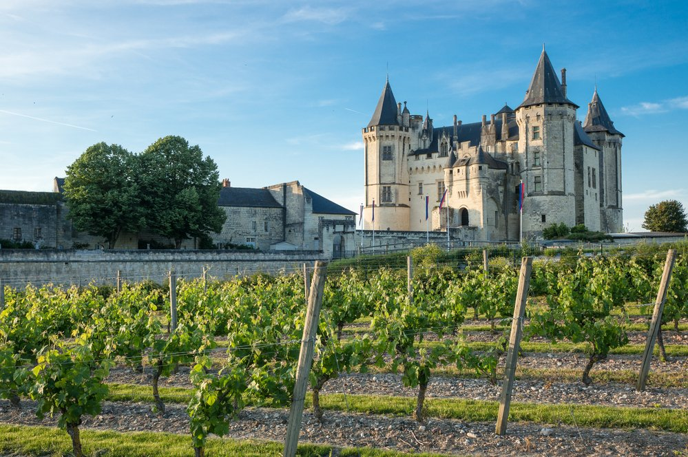 11 Best France Wine Regions To Visit