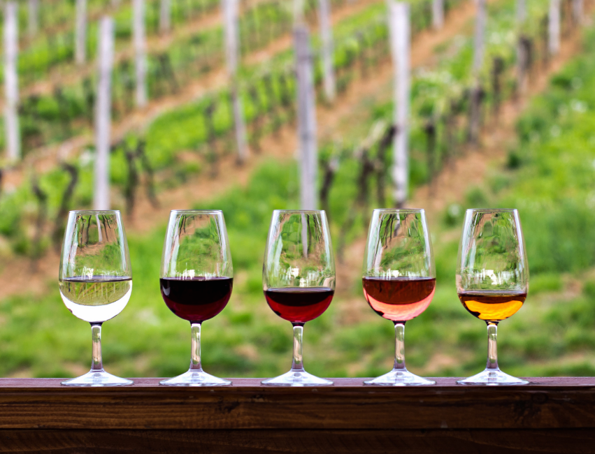 international wine days national wine day national drink wine day when is national wine day today is national what day wine holidays