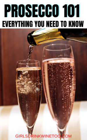 What is Prosecco wine? One of Italy's most famous drinks, bubbly Prosecco wine has become popular and accessible all over the world. You've likely tried a glass of sparkling wine already, but do you know what makes Prosecco so special, and what makes for a good quality bottle?  Is Prosecco dry? Proseccio |what Prosecco |Wine Prosecco