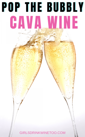 Wondering what Cava wine is? In short, Cava wine is Spanish sparkling wine. You have probably had Cava wine and didn't even know it. Cava wine is a great alternative to Champagne. It is great when you want to pop some bubbly without breaking the bank.  is cava champagne | cava bottle wine cava | cava meaning| bottles of cava| cava champagne | ca va | brut nature cava | Spanish cava | cava sparkling wine |sparkling mean