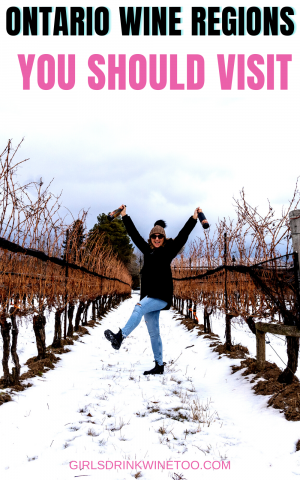 """What to visit some Ontario wine regions? When you think of Ontario wine regions, you may not be the first place on the globe that springs to mind. However, the Canadian province is the country's leading grape producer, home to over 17,000 acres of vineyards and responsible for approximately 85% of all Canadian wine production. After all, even the name Ontario means """"sparkling water."""""""